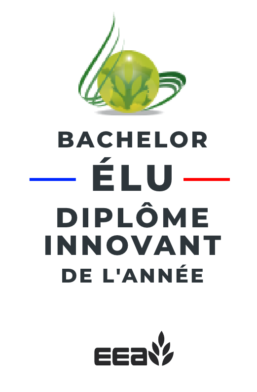 prix innovation bachelor EEA